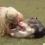 Garota faz sexo oral em um cachorro bem grande
